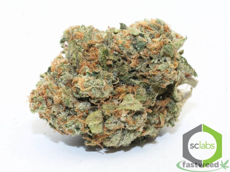 Satellite Og (5.5g For $41.70! +tax)