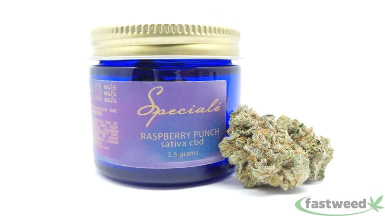 Raspberry Punch Cbd By Speciale